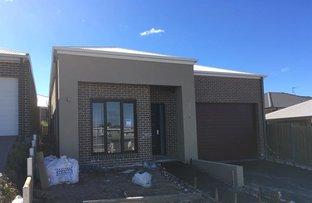 Lot 315 Romney St, Elderslie NSW 2570