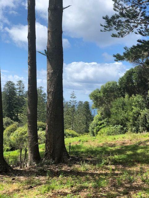 89a Bumboras Road, Norfolk Island NSW 2899, Image 2