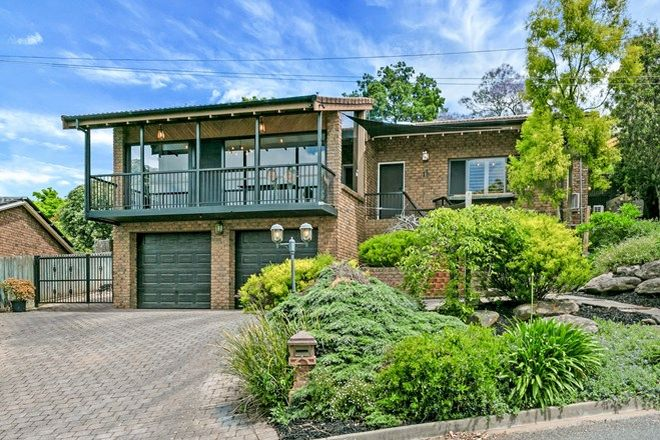 Picture of 11 Buchanan Court, HIGHBURY SA 5089