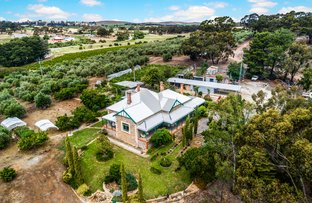 Picture of 134 Farrell Flat Road, Clare SA 5453