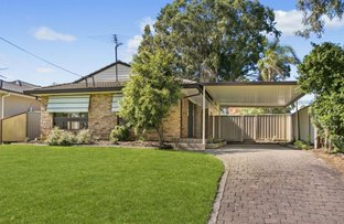 Picture of 3 Bligh Avenue, Camden South NSW 2570