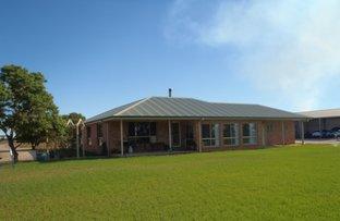 Picture of 283b Toorak Road, Leeton NSW 2705