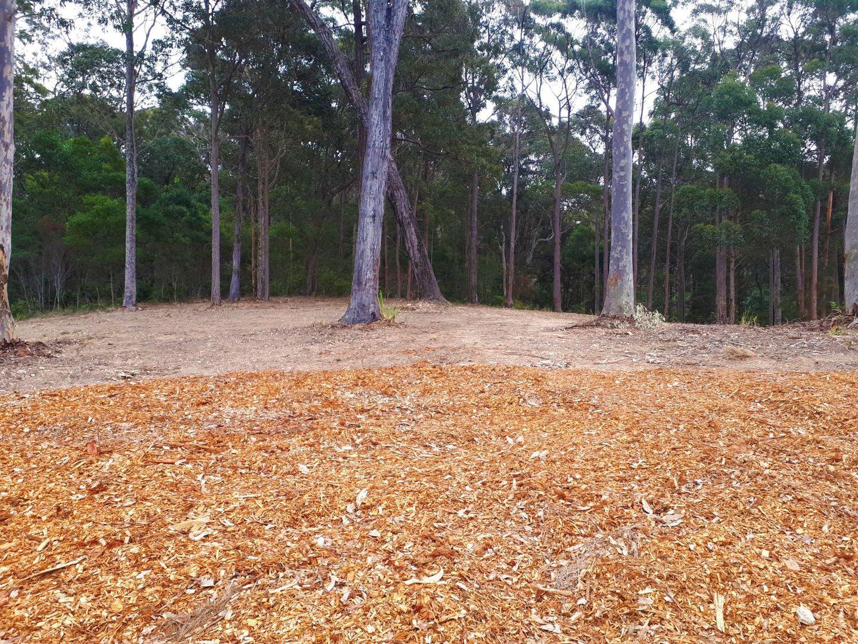 39 Bunderra Circuit, Lilli Pilli NSW 2536, Image 1