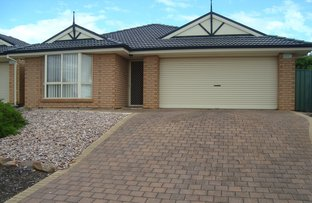 Picture of 33 Applecross Drive, Blakeview SA 5114