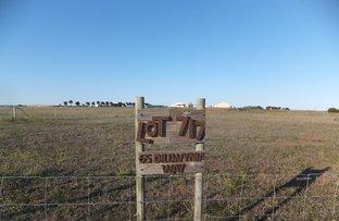 Picture of 65 Dillwynia Way, Hopetoun WA 6348