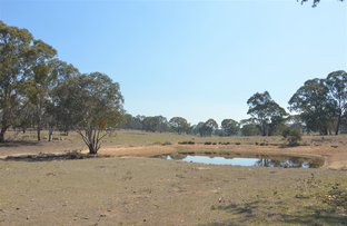 Picture of Lot 83 Dolomite Road, Rylstone NSW 2849