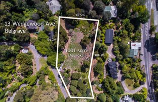 Picture of 13 Wedgewood Avenue, Belgrave VIC 3160