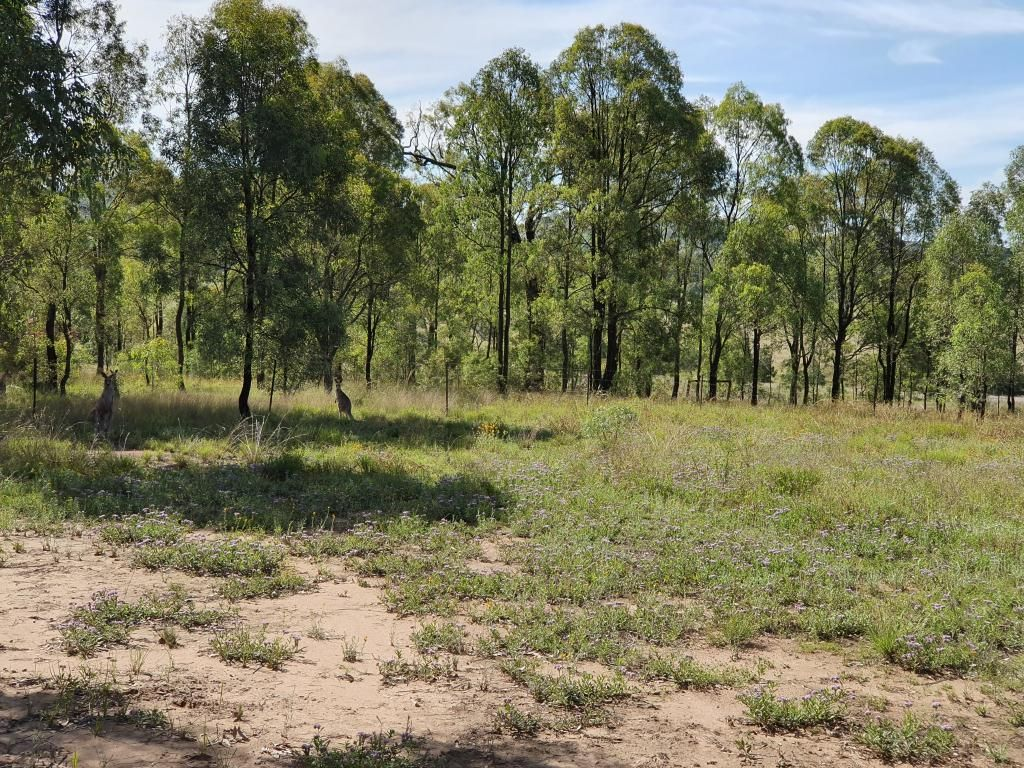 51 Babbler Crescent, Muscle Creek NSW 2333, Image 2