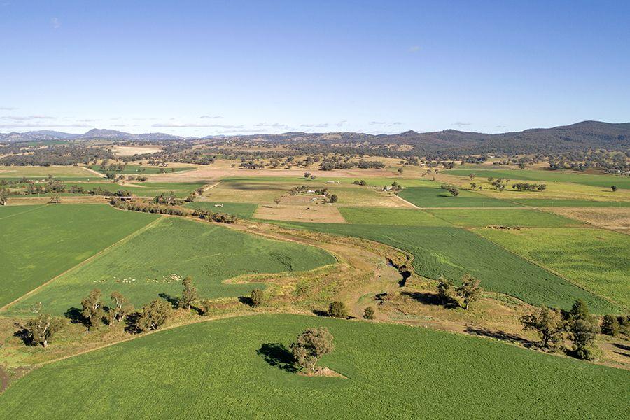 """Spring Vale"" 683 Wallabadah Rd, Quirindi NSW 2343, Image 0"