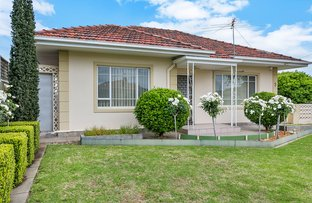 3 Clovelly Avenue, Royal Park SA 5014