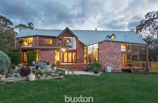 Picture of 250 Long Street, Ballarat East VIC 3350