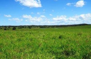 Walkers Road, South Bingera QLD 4670