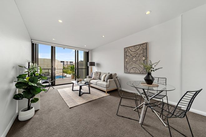 Picture of 16/38 Mort Street, BRADDON ACT 2612