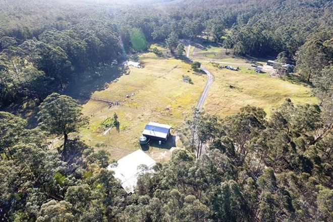 Picture of Lot 40 Hancocks Creek Road, WANDANDIAN NSW 2540