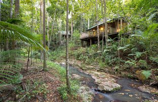Picture of 78 Narrows Road, Montville QLD 4560