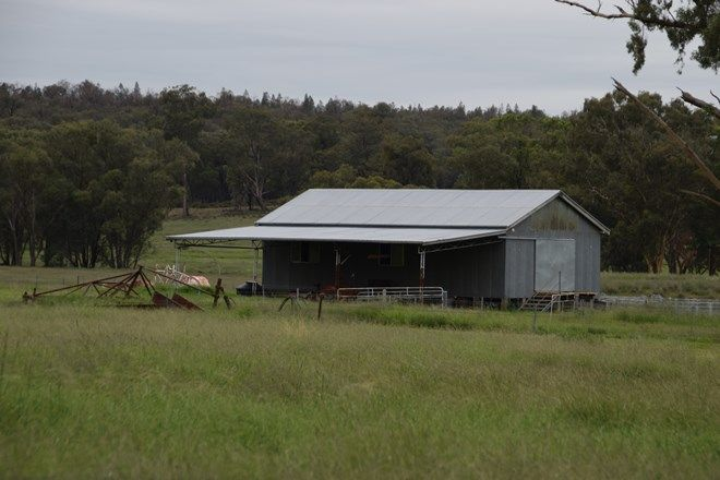 Picture of 'Appletree Flat' 1864 Castlereagh Hwy, MENDOORAN NSW 2842