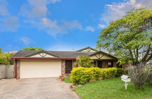 331 Warrigal Road, Eight Mile Plains QLD 4113