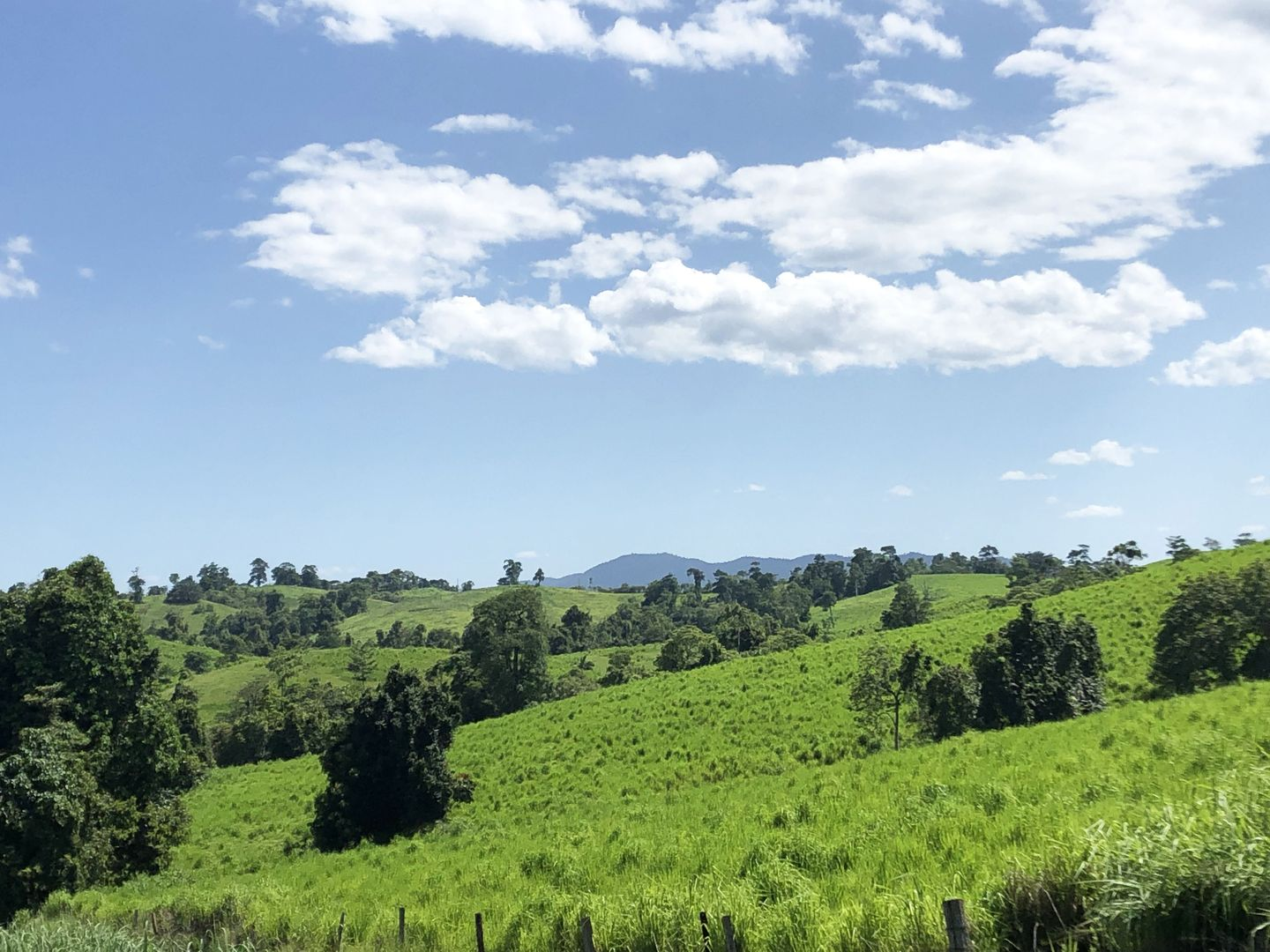 East Palmerston QLD 4860, Image 1