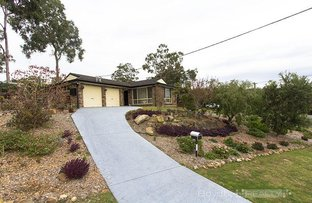 98 Illingworth Road, Yellow Rock NSW 2777