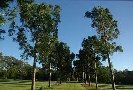 Sherwood QLD 4075, Image 2