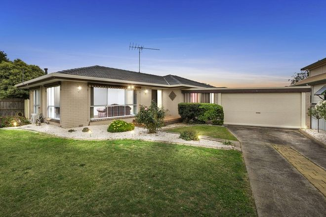 Picture of 42 Peter Street, GROVEDALE VIC 3216