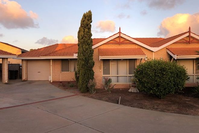 Picture of 6/450 Chapman Road, BLUFF POINT WA 6530