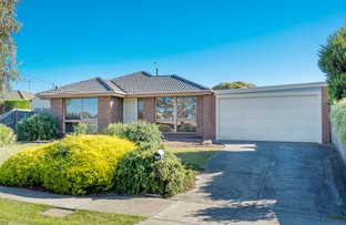 Picture of 84 Hothlyn Drive, Craigieburn VIC 3064