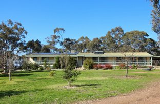 Picture of 1815 Wangaratta-Yarrawonga Road, Killawarra VIC 3678
