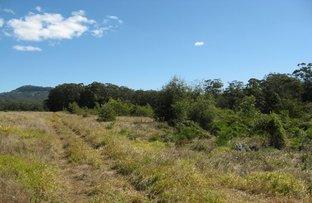 Picture of Landsborough QLD 4550