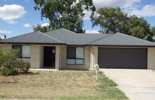 Picture of 13 Courtney Street, Roma QLD 4455