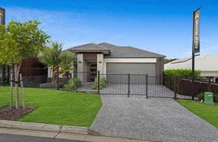 Picture of 7 Elvire Street, Ormeau Hills QLD 4208