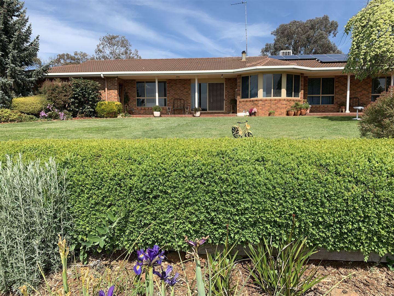 Range View 228 Stony Park Road, Jindera NSW 2642, Image 2