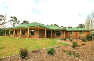 4678 Olympic Way South, Young NSW 2594