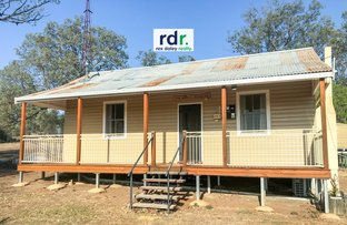 Picture of 17 Warialda Road, Coolatai NSW 2402