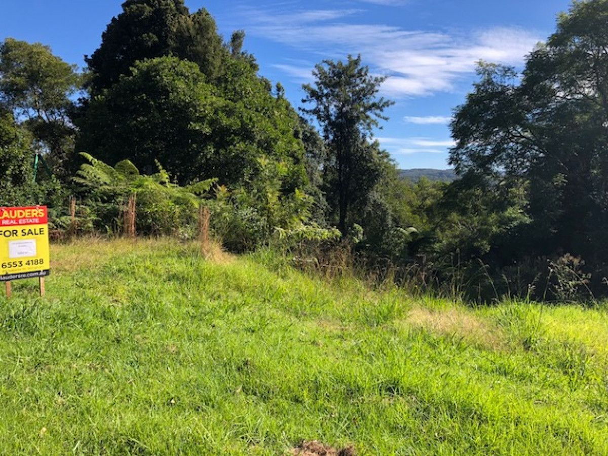 125 Glenwarrin Road, Elands NSW 2429, Image 0