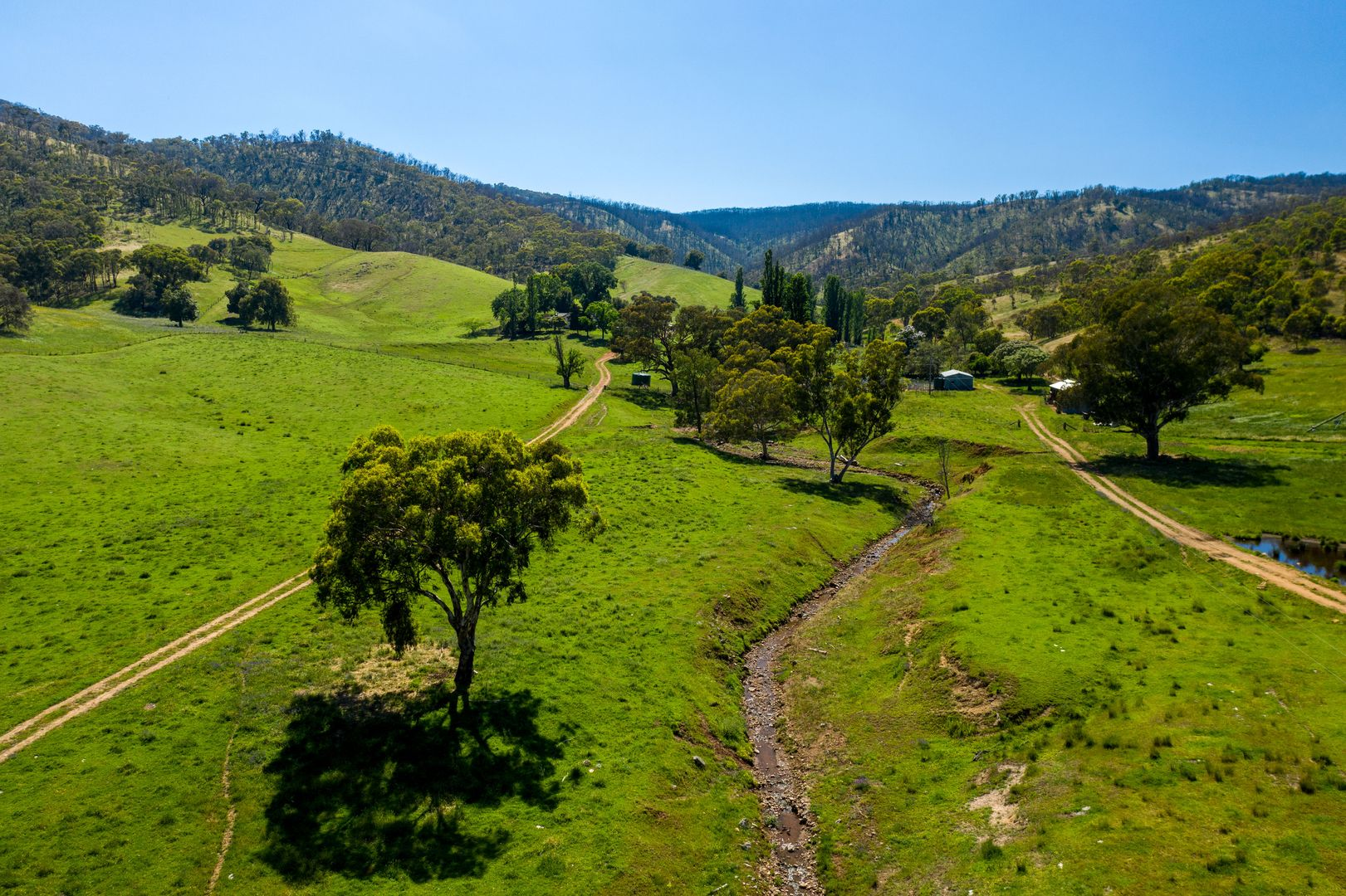 294 STEWARTS ROAD, Oberne Creek NSW 2650, Image 2