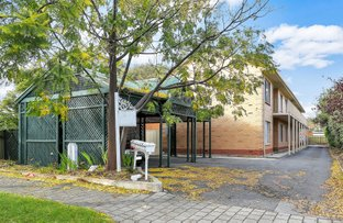 Picture of 3, 4, 6 &/90 Grant Avenue, Toorak Gardens SA 5065