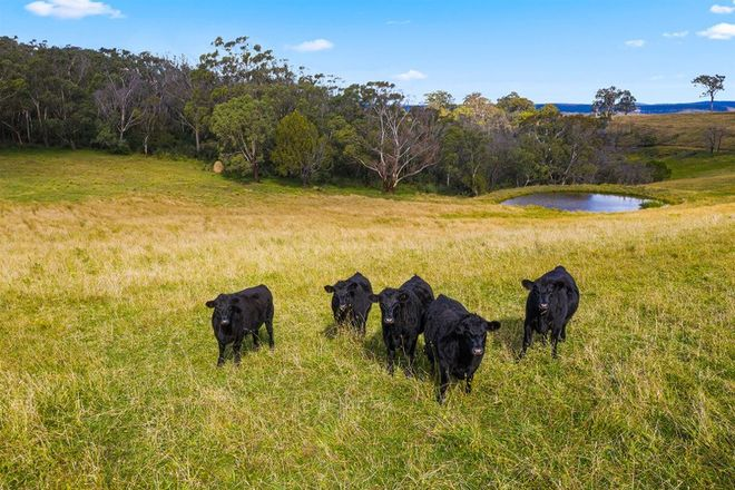 Picture of 1404 Caoura Road, TALLONG NSW 2579