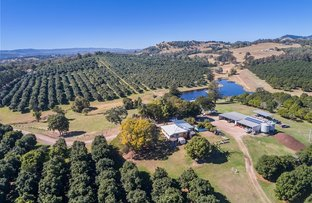 Picture of 522 McIntosh Creek Road , Mc Intosh Creek QLD 4570