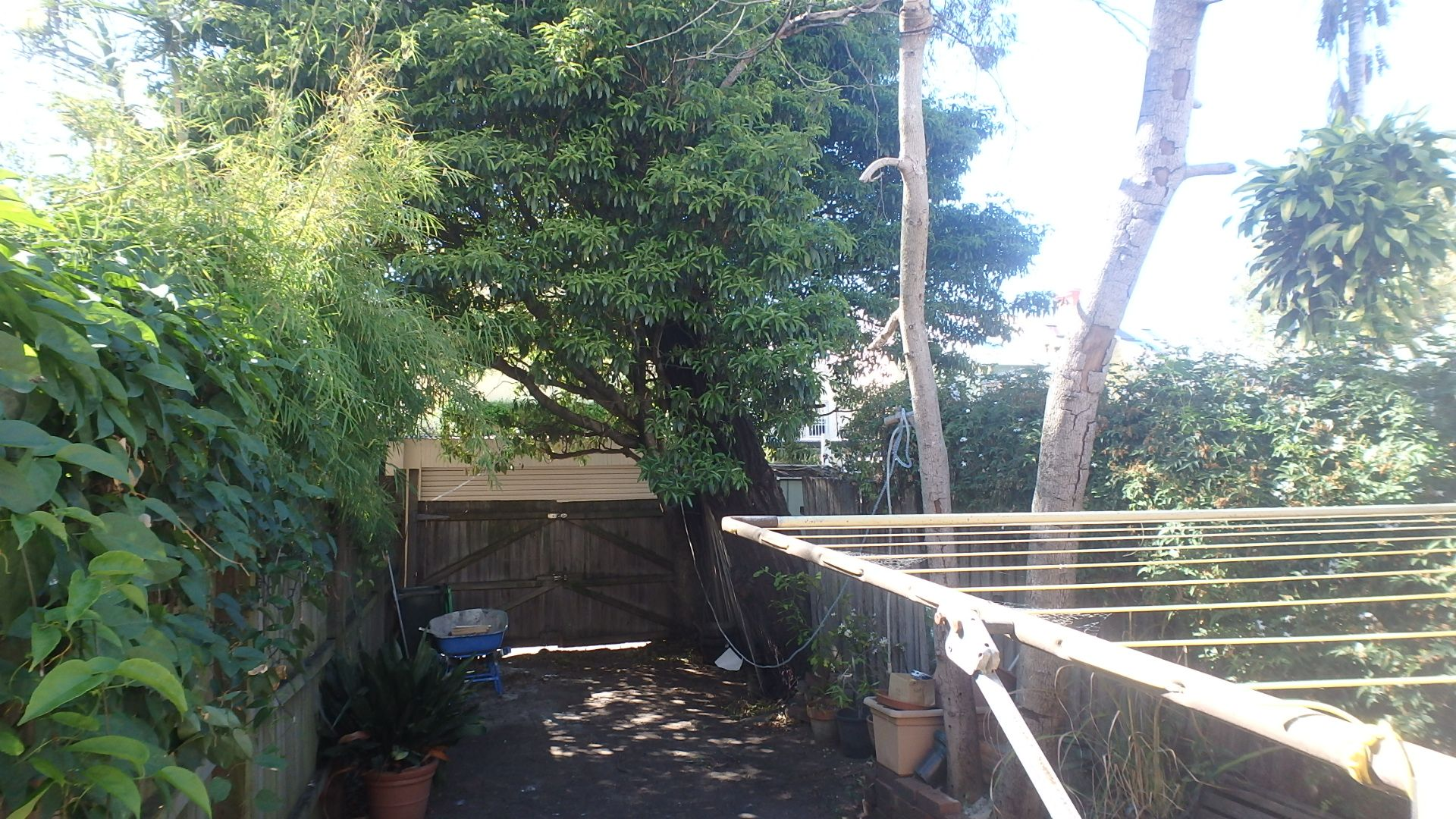 86 Gowrie Street, Erskineville NSW 2043, Image 4