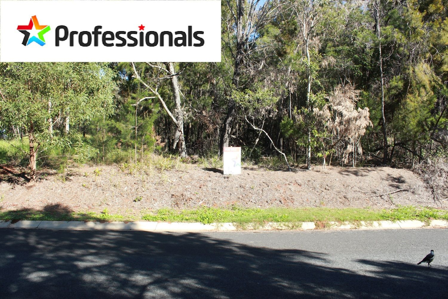 40 Hastings Terrace, Macleay Island QLD 4184, Image 1