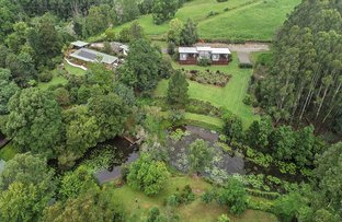 Picture of 241 Hydes Creek Road, Bellingen NSW 2454