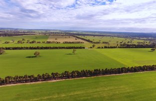 Picture of - Western Highway, Dobie VIC 3377