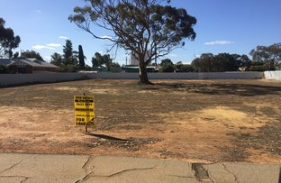 Picture of 23 Glass St, Trayning WA 6488