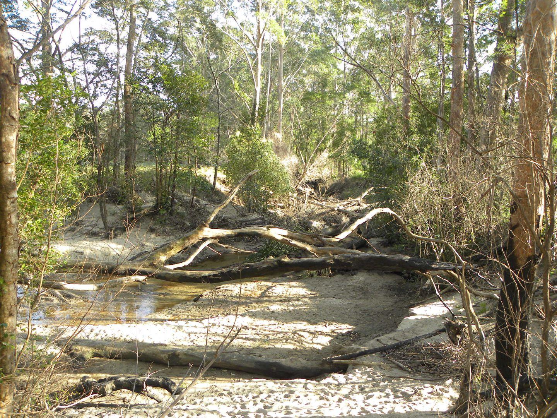 40, Lot 40 Hancocks Creek, Wandandian NSW 2540, Image 2