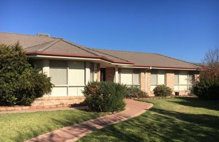 Picture of 15 Hillview Place, Leeton NSW 2705