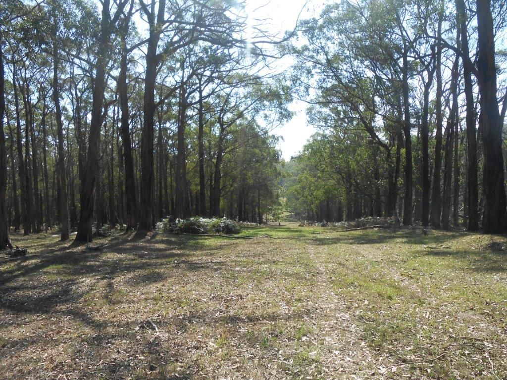 Lot 1/355 Boys Road, Fish Creek VIC 3959, Image 2