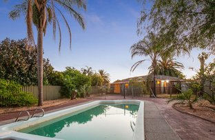 Picture of 8 Gordon Place, Huntingdale WA 6110
