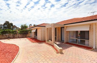 Picture of 4 Thicket Circuit, Banksia Grove WA 6031