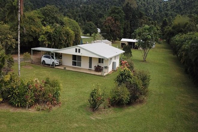 Picture of 1231 Old Tully Road, MAADI QLD 4855